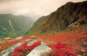 Photo: Parc national des Hautes-Gorges-de-la-rivière-Malbaie/SEPAQ
